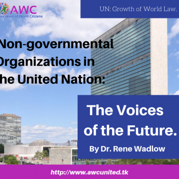 Non-governmental Organizations in the United Nation: The Voices of the Future.