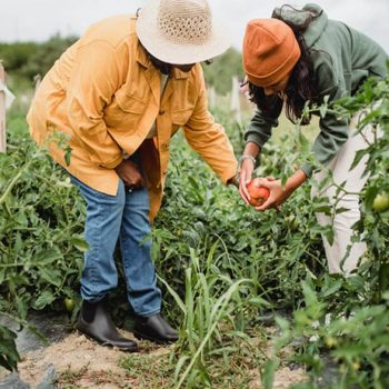 John Boyd Orr: A World Citizen's Focus on Food