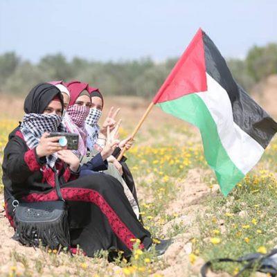 Ecologically-sound Gaza Development Programme.